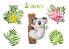 Лето акварели установило с милым медведем коалы и тропическими листьями и заводами, изолированными на белой предпосылке иллюстрация вектора