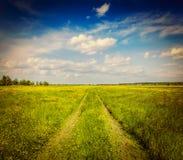 Лето весны - сельская дорога в зеленом пейзаже поля Стоковое фото RF