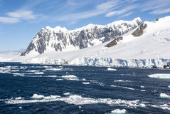 Лето в Антарктике стоковое фото rf