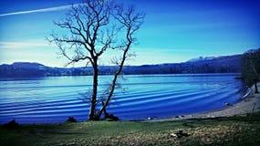 Лето в озерах! Стоковая Фотография RF