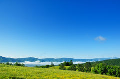 лето голубого неба Стоковое Изображение RF