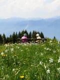 лето гор дня Стоковое Фото
