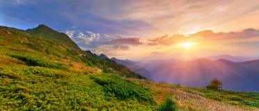 лето гор ландшафта стоковое фото
