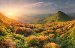 лето гор ландшафта Стоковая Фотография RF