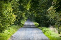 лето дороги гравия Стоковая Фотография RF