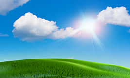 лето жары Стоковые Изображения RF
