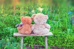 Лето 2 игрушек плюшевого медвежонка среди зеленой травы с цветками, Стоковая Фотография