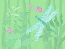 лето иллюстрации dragonfly Стоковое фото RF