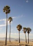 Лето Калифорнии - пляж Санта-Моника Стоковые Изображения RF