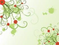 лето конструкции флористическое Стоковое Изображение
