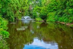 лето ландшафта предпосылки естественное Стоковые Фотографии RF
