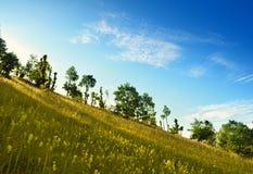 лето ландшафта Стоковое фото RF