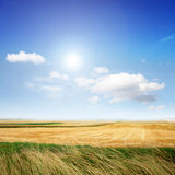лето ландшафта Стоковое Фото