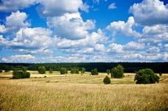лето ландшафта Стоковые Фото