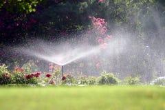 лето ливня Стоковая Фотография RF