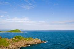 лето моря свободного полета Стоковое Фото