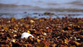 Лето на пляже Стоковые Фотографии RF