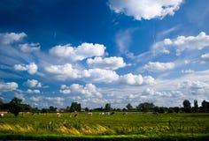 лето неба страны стоковые изображения rf