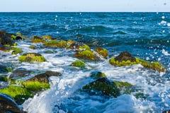 лето неба seascape моря голубых утесов Прибой моря, волны Стоковое Изображение