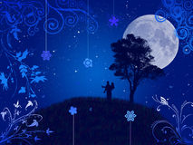 лето ночи Стоковое Фото