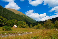Лето дня горы Стоковое Изображение RF