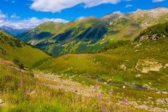 Лето дня горы Стоковые Фотографии RF