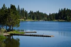 лето озера Стоковые Изображения