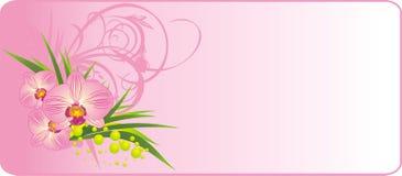 лето орхидей состава букета бесплатная иллюстрация