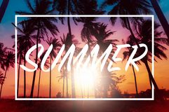 Лето открытки Пальмы кокоса силуэта на пляже на sunse Стоковые Фото