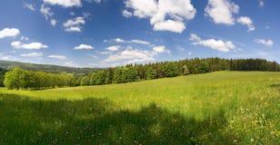лето панорамы лужка Стоковая Фотография