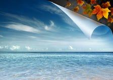 лето падения к Стоковое Изображение