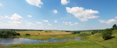 лето пейзажа озера Стоковое фото RF