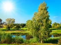 лето пейзажа Стоковая Фотография RF