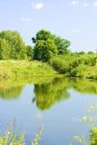 лето пейзажа Стоковое фото RF