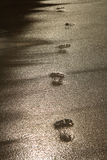 лето песка следа ноги Стоковые Фото