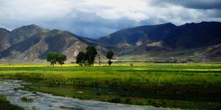 лето плато Стоковые Изображения