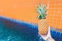 Лето плодоовощ свежего желтого ананаса троповое в женщине вручает carryi Стоковое фото RF