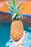 Лето плодоовощ свежего желтого ананаса троповое в женщине вручает carryi Стоковые Изображения