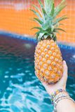Лето плодоовощ свежего желтого ананаса троповое в женщине вручает carryi Стоковые Фотографии RF