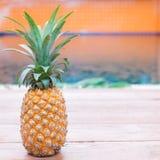 Лето плодоовощ свежего желтого ананаса троповое Стоковые Фото