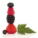 лето плодоовощ ягоды Стоковая Фотография RF