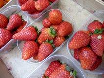 лето плодоовощ Стоковое фото RF