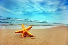 лето пляжа