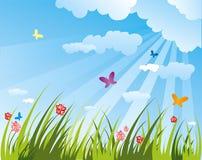 лето поля бесплатная иллюстрация