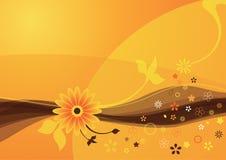 лето померанца цветка предпосылки Стоковая Фотография