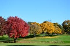 Лето понижается в осень Стоковые Изображения RF