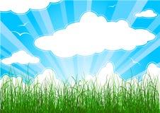 лето предпосылки солнечное Стоковые Изображения RF
