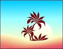 лето предпосылки флористическое Стоковое фото RF