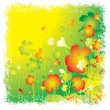 лето предпосылки флористическое Стоковые Фотографии RF