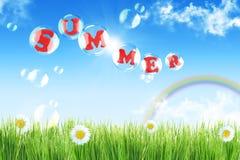 лето радуги ландшафта цветков Стоковые Фото